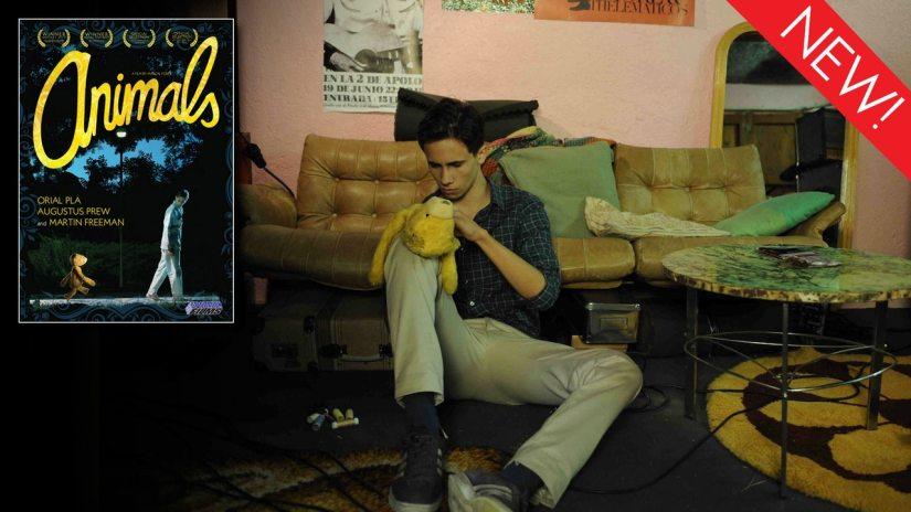 DEKKOO DISPATCH 026 – 'Animals'