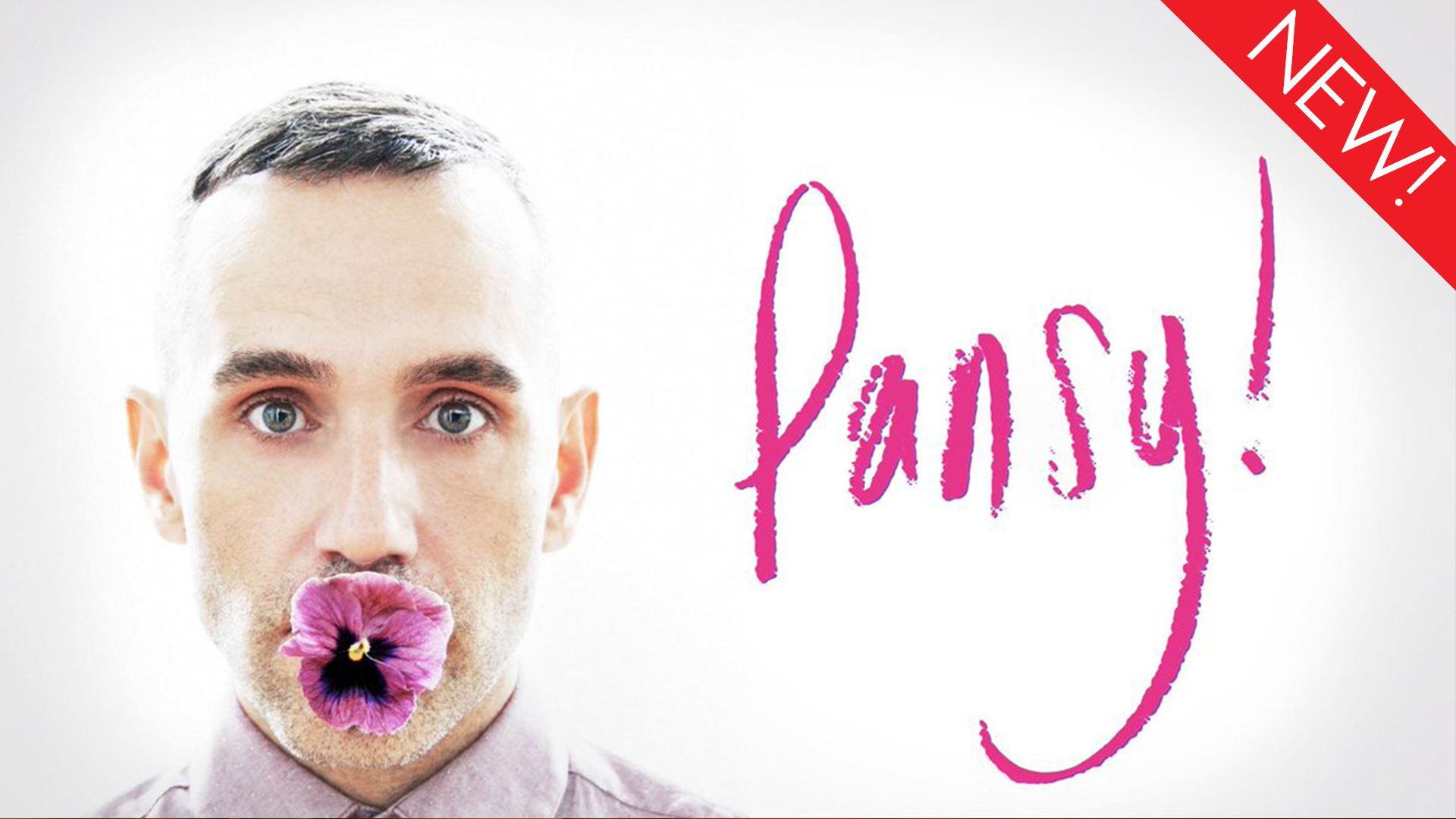 This is the art for the gay documentary, 'Pansy'